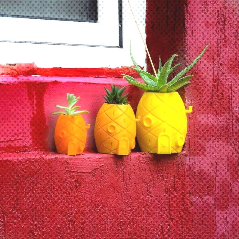 SPONGEBOB house succulent planter 3D printed small cactus | EtsyYou can find indoors spongebob and